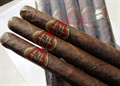 Don Rogue Churchill Maduro